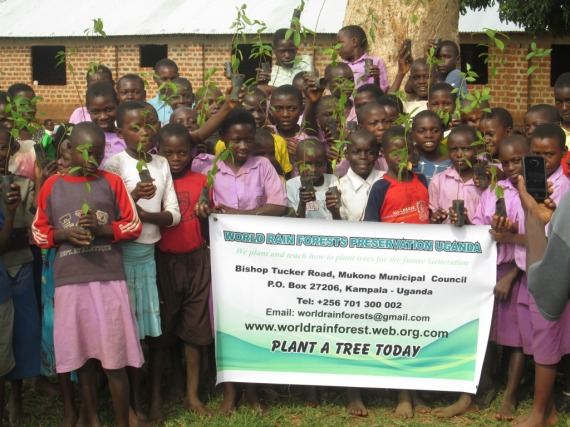 Kibiribiri Pupils with ready to plant their donated trees from World Rain Forest Preservation Organization and KIRUCODO