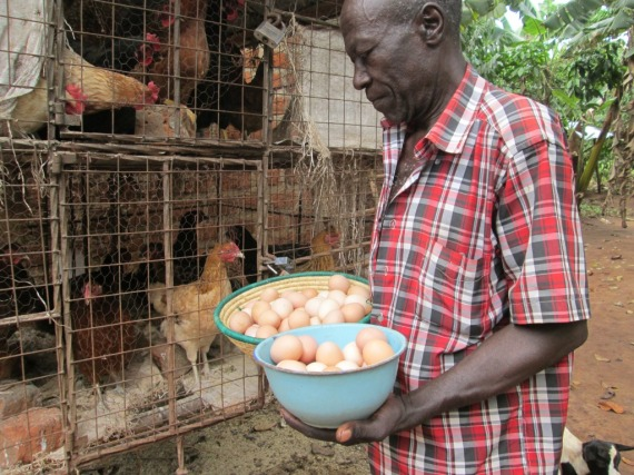 Kibiribiri C/U Chairman School Management Committee holds eggs he has collected in a two-weeks period